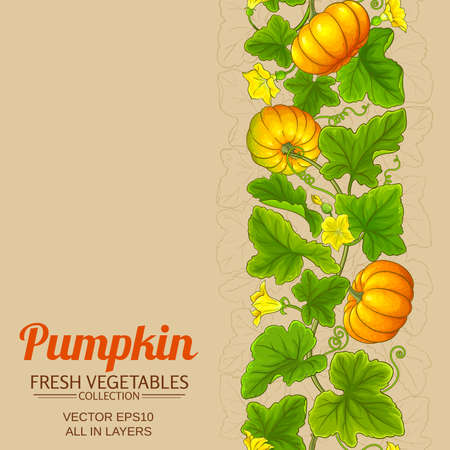 pumpkin vector background Ilustrace