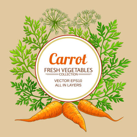 carrot vector frame