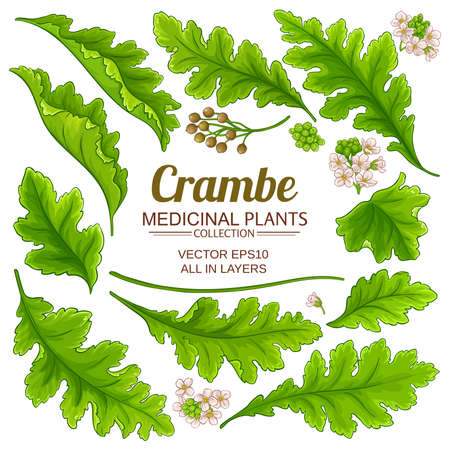 crambe elements set