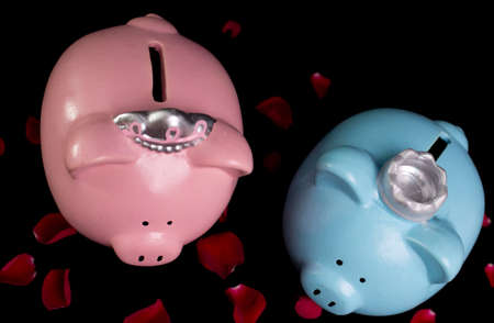king and queen: King   queen piggy banks on a bed of red rose petals on black background Stock Photo