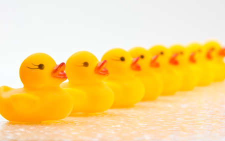 Yellow rubber ducks lined up in a row