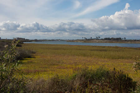 chica: Scenic summer clouds over the Bolsa Chica Wetlands in Huntington Beach, California Stock Photo