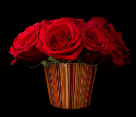 Bouquet of beautiful red roses on black background
