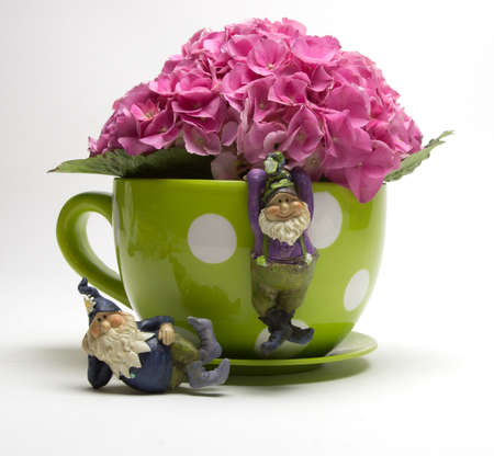 Pink fushia hydrangeas in a yellow polka dot coffee mug with garden gnomes