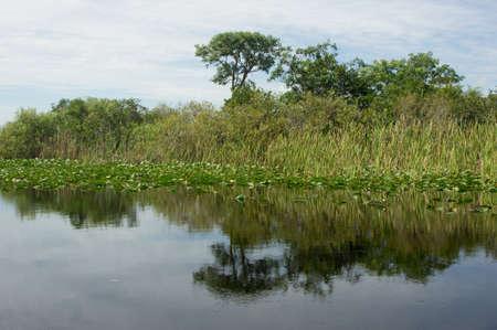 Scenic landscape Florida Everglades photo