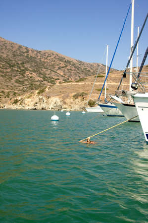 isthmus: Yachts & boats moored at Catalina Harbor, located on the back side of Santa Catalina Island at the Isthmus
