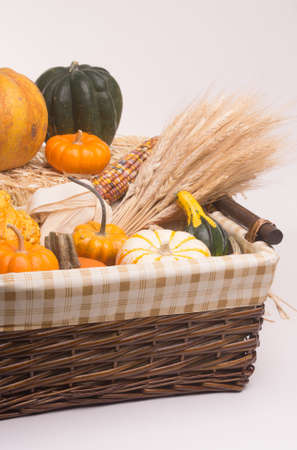 cinderella pumpkin: Basket with pumkins, gourds, acorn squash,  Indian Corn, and wheat stalks.  Isolated on white background with light shadow