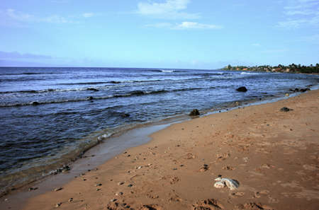 Seashore at Kaanapali Beach on the Hawaiian Island of Maui photo