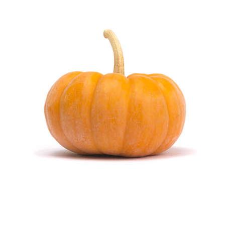 cinderella pumpkin: Single fairytale pumpkin isolated on white background with light shadow