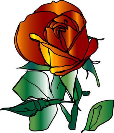 Hand-drawn rose photo