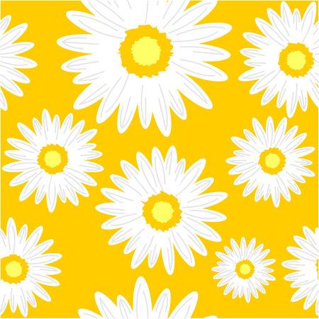 Fondo transparente con flores de margarita. Ilustración gráfica de vector.