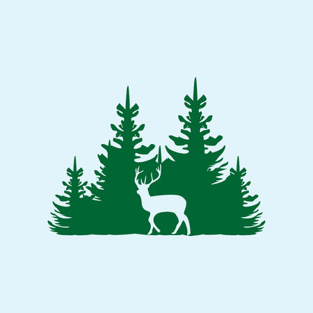 Deer on the background of the coniferous forest.