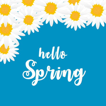 Beautiful colorful background with flowers. Vector Illustration with lettering inscription Hello Spring. Banque d'images - 118684919