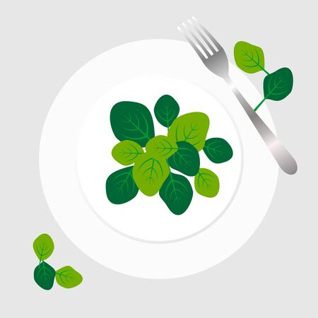 Fresh green spinach leaves on a white plate with fork. Flat top view space on grey background. Vector illustration of healthy and  delicatessen food.