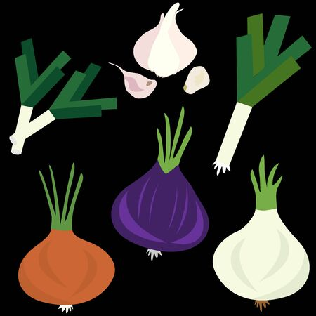 Set icons of onion and garlic.  Vector clipart of eco vegetables.
