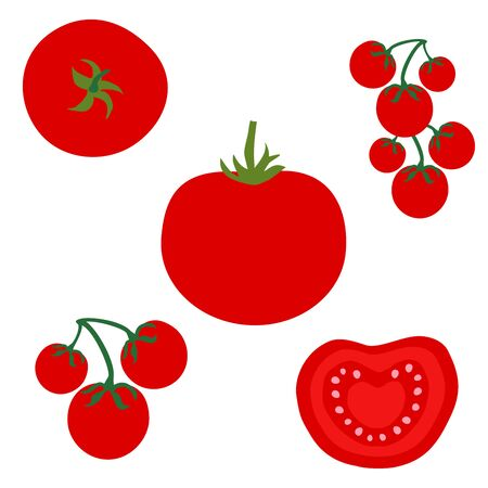Set icons of tomatoes. Vector clipart of eco vegetables. Çizim