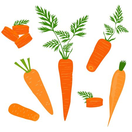 Set icons of carrots. Vector clipart of eco vegetables.