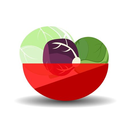 Different cabbage heads in a red transparent bowl. Vector graphic illustration with shadow.