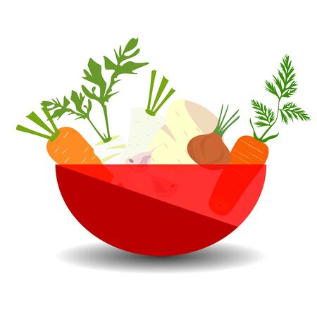 Vegetables for soup in a red transparent bowl. Vector graphic illustration with shadow.