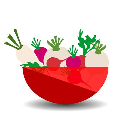 Different types of radishes in a red transparent bowl. Vector graphic illustration with shadow. Çizim