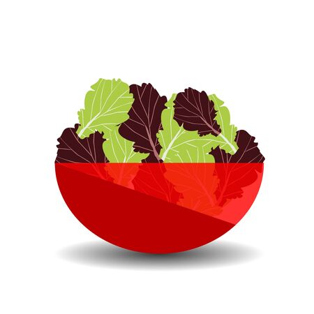Green and purple salad in a red transparent bowl. Vector graphic illustration with shadow.