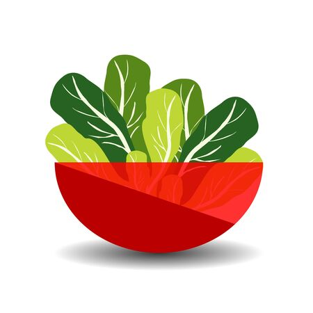 Lettuce in a red transparent bowl. Vector graphic illustration with shadow.