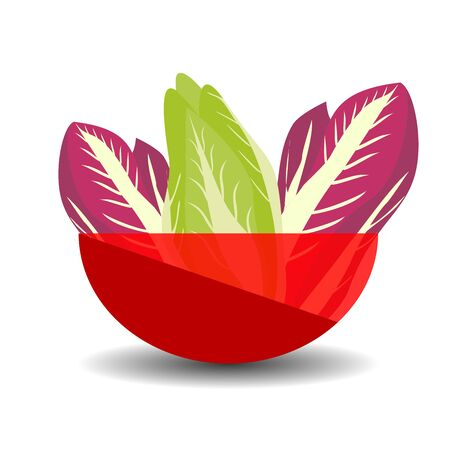 Purple and green napa or chinese cabbage in a red transparent bowl. Vector graphic illustration with shadow. Çizim