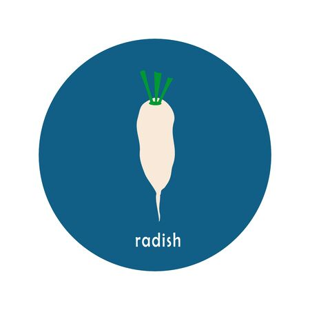 Vector radish icon isolated on white background.  Flat blue circle icon with vegetable. Healthy food.