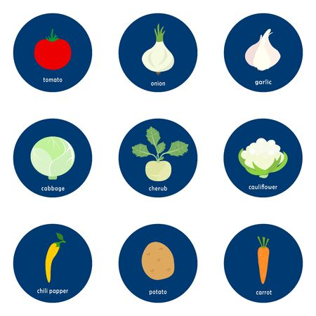 Set of vegetables vector icons isolated on white background.  Flat blue circle icon with healthy food.