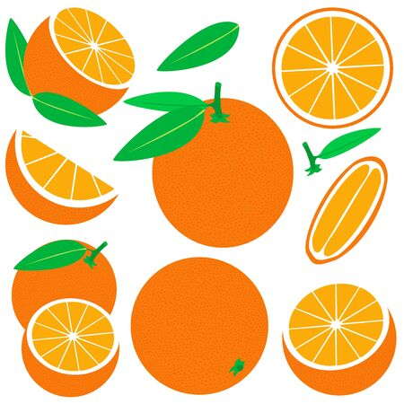 Vector orange set isolated on white background. Fresh and juicy whole orange and slices. Vecteurs