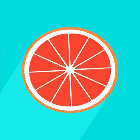 Vector realistic grapefruit icon with long shadow Fresh and juicy slice grapefruit.