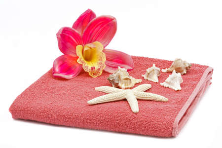 Pink orchid decoration with towel and sea shells photo