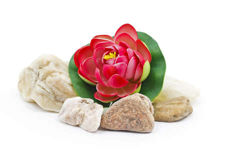 Red Water lily flower decoration with small river rocks Stock Photo - 9653882