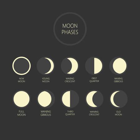 Illustrazione di vettore di fasi lunari. Ciclo delle fasi lunari, luna nuova, luna piena, icone di luna crescente e calante. Vettoriali