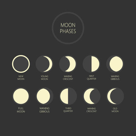 Ilustración de vector de fases lunares. Ciclo de fase lunar, luna nueva, luna llena, iconos de luna creciente y menguante. Ilustración de vector