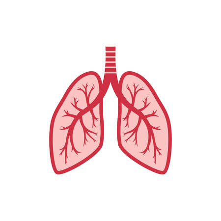 Human lungs colorful vector cartoon icon. Lung, bronchi, human organ illustration in color. Stock Illustratie