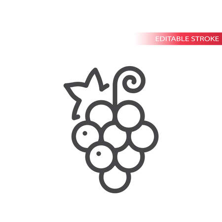 Grape line vector icon. Outline, editable stroke.