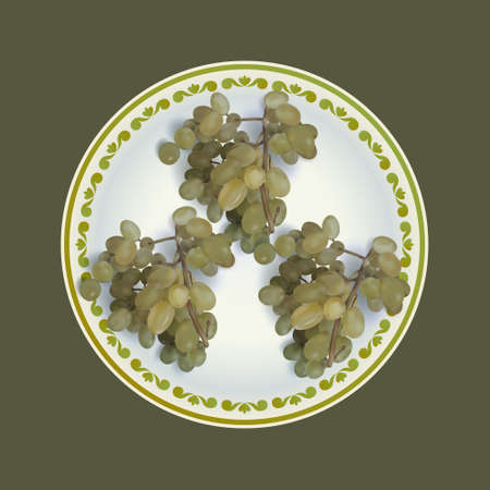 White grapes bunches on plate vector illustration Illustration