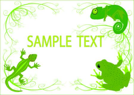 salamandra: fondo de reptiles Vectores