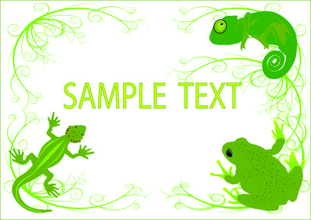 salamander: Reptilien-Hintergrund  Illustration