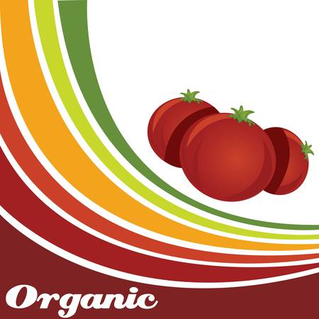 Tomato - Organic food background Vector