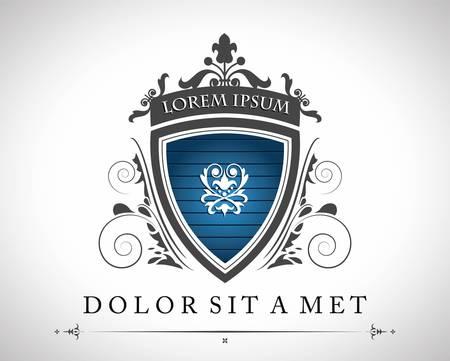 shield emblem: Vintage emblema con un posto per il vostro testo