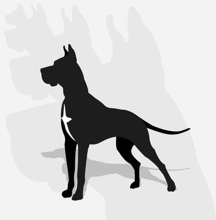 Great Dane- silhouette Stock Vector - 15737852