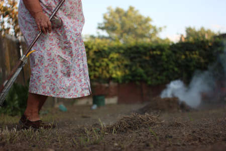 An old woman collecting old leaves into the fire by the rake.