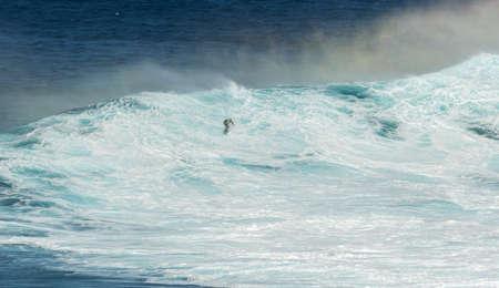 granola: Maui, Hawaii, EE.UU. - 15 de diciembre 2013: Desconocido surfista est� montando una onda grande en Jaws