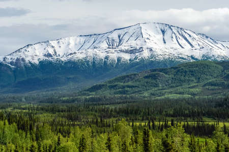 snow capped mountain: snow capped mountain alaska Stock Photo