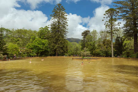 thermal spring: FURNAS, SAO MIGUEL, AZORES-APRIL 27, 2016: thermal pool in the terra nostra park