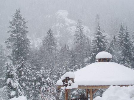 snow covered pagoda