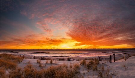 Golden sunrise over the beach at Pearl Sreet in Beach Haven, NJ with grass and a dune fence in the foreground