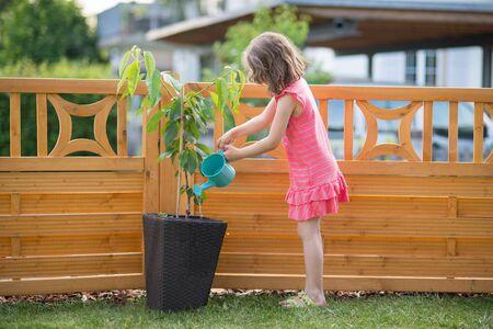 watering plants: Happy little girl watering plants in the garden Stock Photo